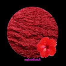 Poudre d'Hibiscus d'Egypte