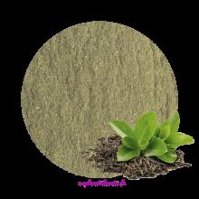 Thé vert (poudre)