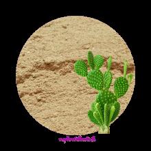 Cactus Poudre - MA PLANETE BEAUTE