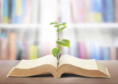 Bibliopoudre | MA PLANETE BEAUTE