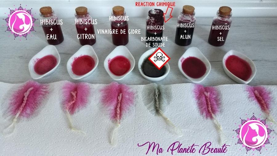 Hibiscus : Variations de couleurs selon la base utilisée