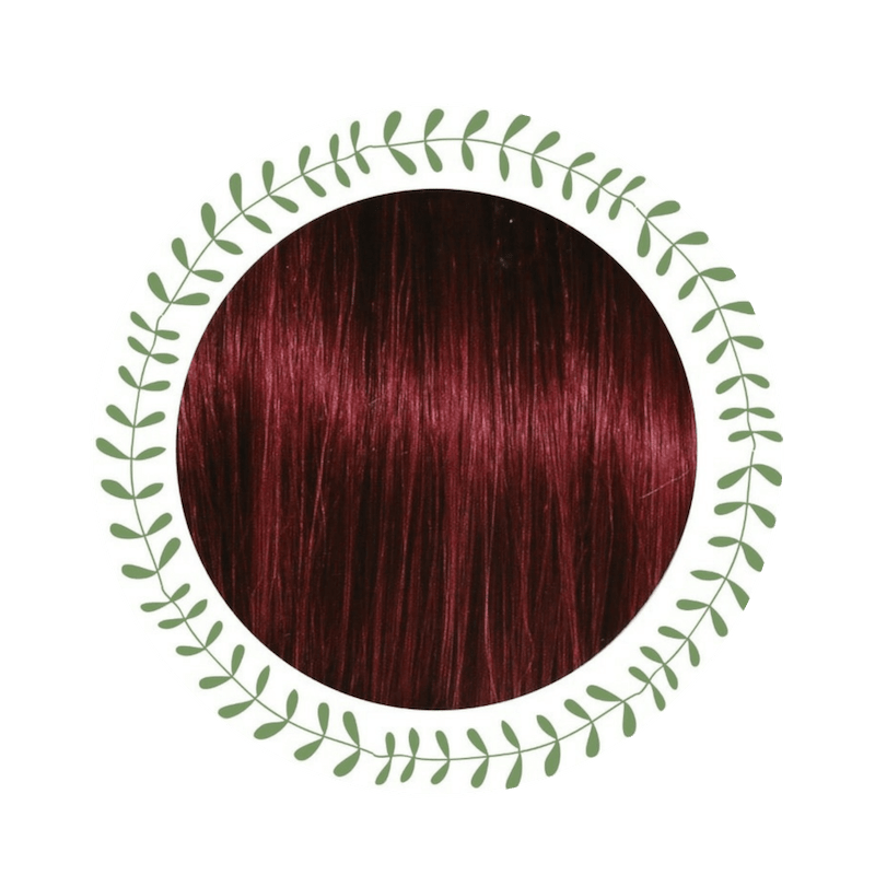 Coloration Burgundy - Cultivator's India | MA PLANETE BEAUTE