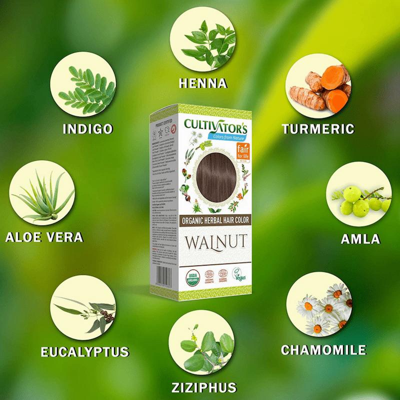 Coloration Walnut Cultivator's India - MA PLANETE BEAUTE