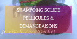 DIY SHAMPOING SOLIDE PELLICULES & DEMANGEAISONS | MA PLANETE BEAUTE