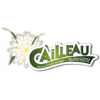 Cailleau...