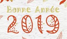 Bonne année 2019...A toutes celles qui ....