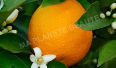 La poudre d'orange pour des cheveux doux et faciles à coiffer !