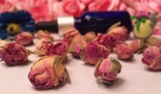 L'Elixir des Impératrices: Sérum huileux rose, nigelle, argan, figue de barbarie